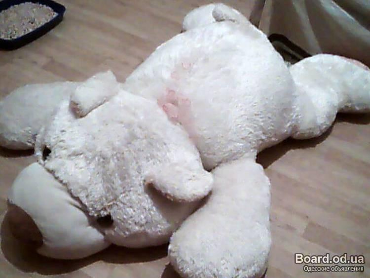 Продам огромного плюшевого медвежонка.