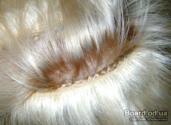 Безопасное наращивание волос! фото / хорошо ли наращивание волос на косичках
