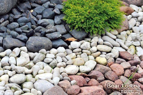 какие камни используется для дизайна ландшафта